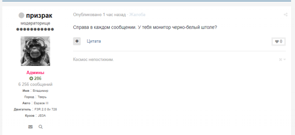 скриншот.PNG